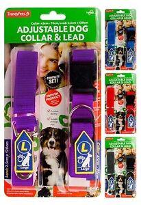 Dog-Nylon-Leash-Adjustable-Collar-55cm-and-Lead-120cm-Combo-AU-Seller-EParcel