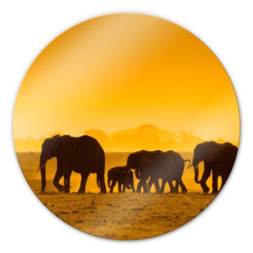 Glasbild Elefantensilhouetten rund gelb WANDBILD ESG SICHERHEITSGLAS DEKO rund