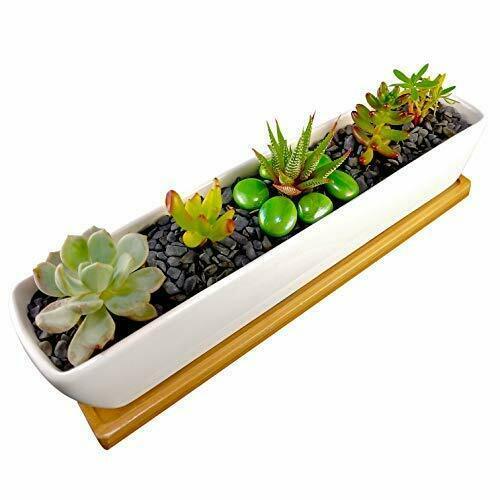 Rectangle Mini Cer COZYHOME ESSENTIALS Succulent Planter White 11 Inch Long