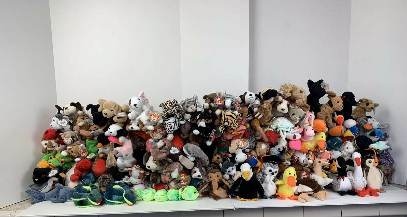 HUGE Lot of 175 NEW Beanie Babies w Tags Predectors 1993 95 96 97 98 99 2000