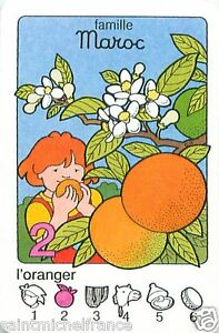 Orange-tree-ORANGER-FLEURS-MAROC-Morocco-PLAYING-CARD-CARTE-A-JOUER
