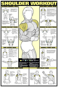 shoulder workout wall chart professional strength training fitness