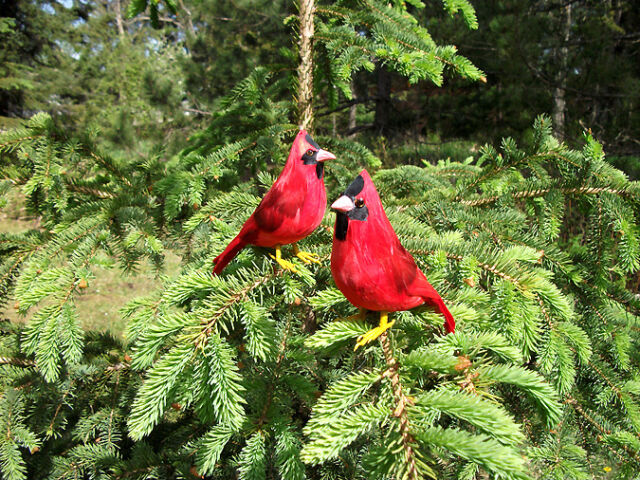 2 REALISTIC CARDINAL BIRD Replica PROP FURRY ANIMAL toys ck156 FREE SHIPPING USA