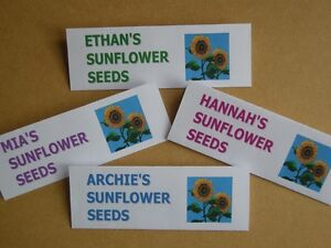 PERSONALISED PACK of 10 SUNFLOWER SEEDS  HANDMADE GIFT for SPECIAL OCCASION - Kent, United Kingdom - PERSONALISED PACK of 10 SUNFLOWER SEEDS  HANDMADE GIFT for SPECIAL OCCASION - Kent, United Kingdom
