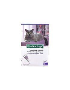 ADVANTAGE-80-bte-de-4-pipettes-anti-puces-chat-Cat-de-4-kg