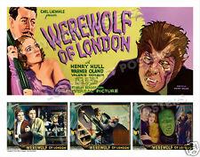 WEREWOLF OF LONDON LOBBY BANNER CARD # 9 POSTER 1935 HENRY HULL VALERIE HOBSON