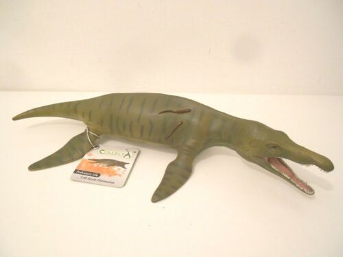 Pliosaurus Dinosaur 1:40 Scale Deluxe Toy Model Figure by CollectA 88699 New