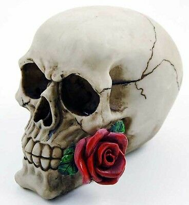 Skull With Rose 10X15X12cm