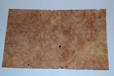 Chestnut Burl Raw Wood Veneer Sheet 6 X 10 Inches 142nd Thick E7318 45