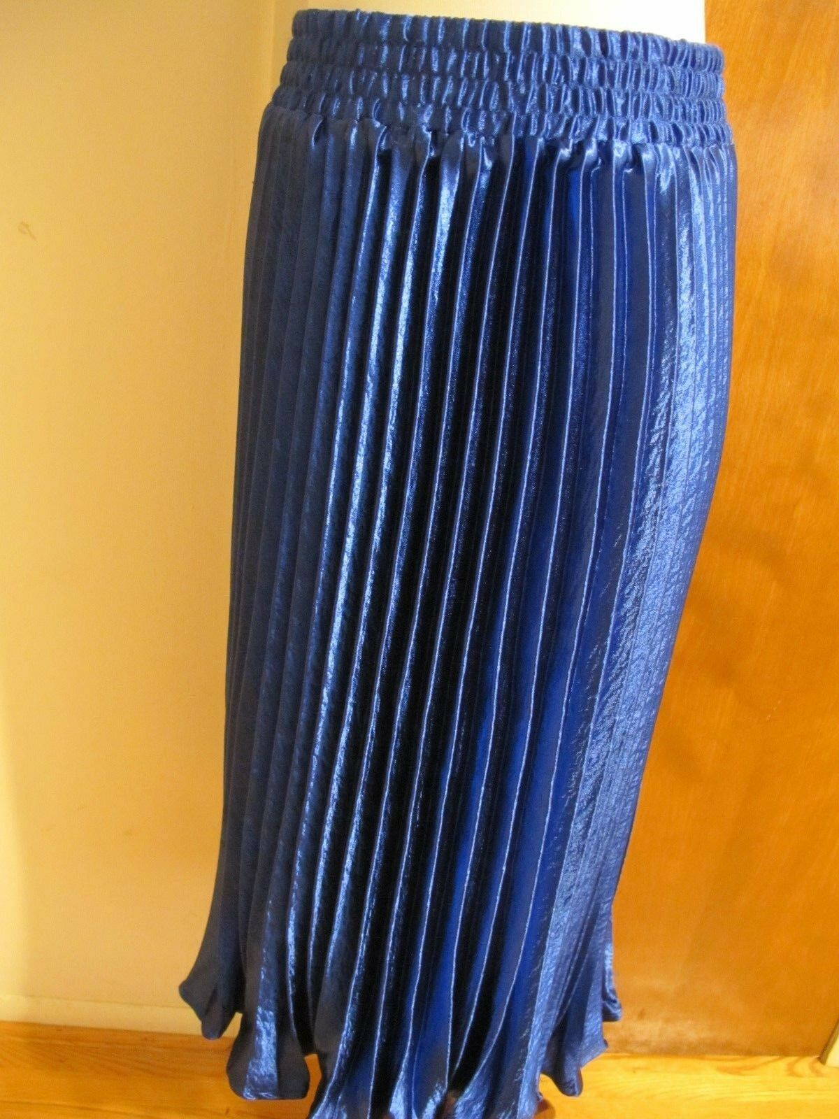 Anthropologie  HD In Paris Women's bluee Sapphire Pleated Skirt Size Large NWT