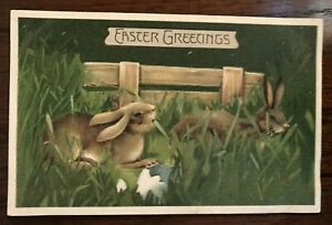 Cute-Bunny-Rabbits-in-Grassy-Meadow-Antique-Embossed-Easter-Postcard-p45