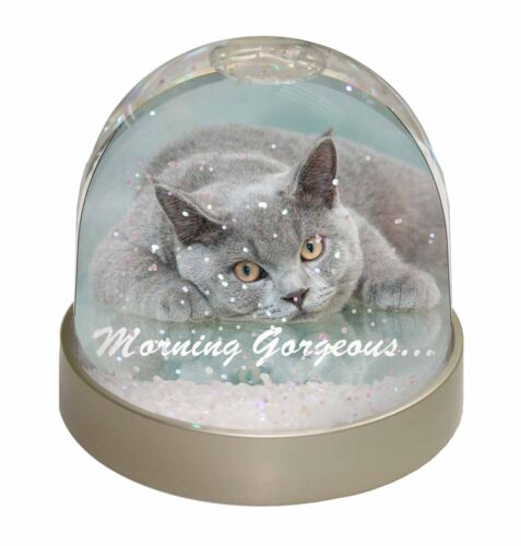 British Blue Cat /'Morning Gorgeous/' Photo Snow Globe Waterball Stocking MG-11GL