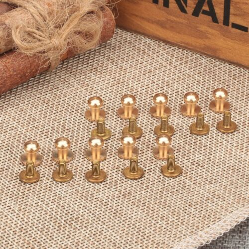 10PCS Antique Brass Sewing Leather Screw Buttons Press Studs Belt Wallet Rivets