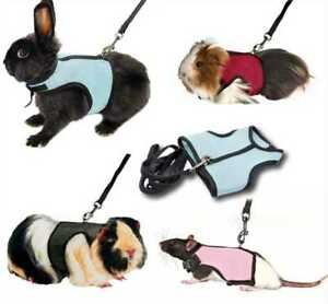 Harness-Guinea-Pig-Forret-Hamster-Rabbit-Squirrel-Vest-Lead-Clothes-Small-Pets