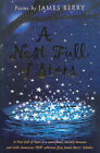 A Nest Full of Stars by James Berry (Paperback, 2003)
