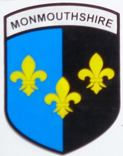 For Inside of Window Monmouthshire County Wales Flag Vinyl Car Window Sticker