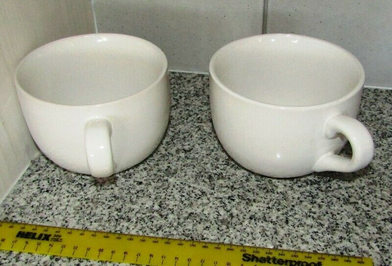 Large Soup Cups x 2