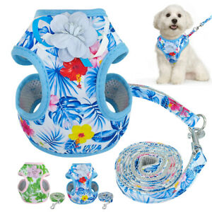 Small-Dog-Harness-amp-Leads-Mesh-Padded-Pet-Puppy-Cat-Vest-for-Yorkie-French-Bulldog