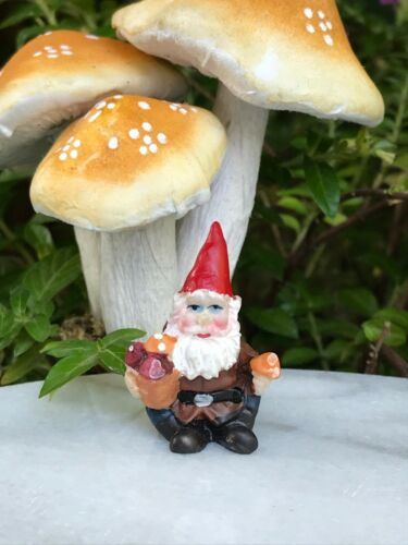 "Miniature Dollhouse FAIRY GARDEN  Accessories ~ TINY 1¼/"" Tall Gnome w Mushrooms"