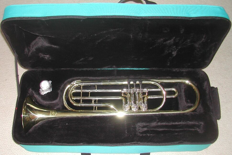 Trompete Bass BB Meeresschnecke neu in Paletten mit Etui und Mund, Trompete