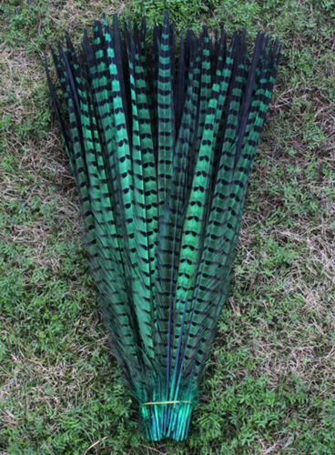 Wholesale !10-200 PCS Natural Pheasant Tail Feathers16-24 Inches 40-60cm