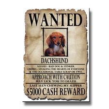 DACHSHUND Rap Sheet FRIDGE MAGNET No 4 DOG Funny