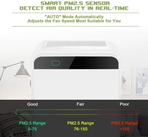 CARB Certified Hepa Filter Air Purifier Room Fresh Air Cleaner 100/% Ozone Free
