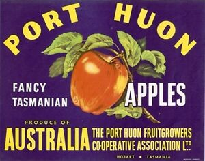 Vintage Tasmania Apple Case Labels Fruit Agriculture Wall Art Poster-D set (24)