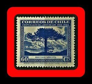 FLORA-ARAUCARIA-ARAUCARIA-IMBRICATA-CLAUDIO-GAY-BOOK-MNH-60-BLUE-1948