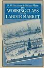 The Working Class in the Labour Market by Robert Blackburn, Martin Mann (Paperback, 1979)