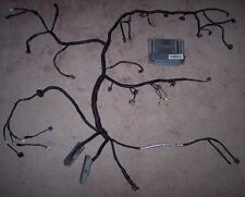 Standalone Wiring Harness rewire and Pcm tune included LS1 LSX 4.8 5.3L 5.7 6.0L