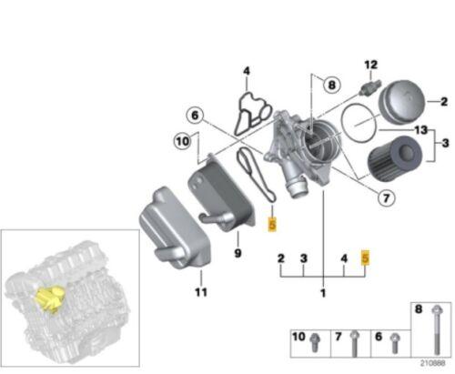 NUOVO Originale BMW Radiatore ad olio del motore Guarnizione 11428637820