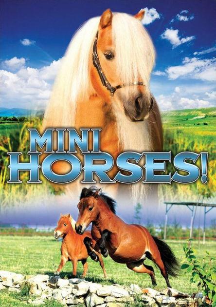 MINI HORSES Documental) DVD - GB Compatible - sellado