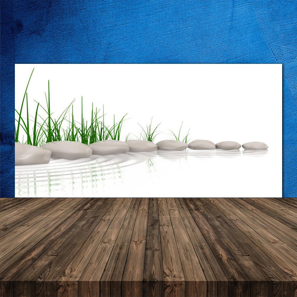 Crédence de cuisine en verre Panneau 120x60 Art Herbe Pierres