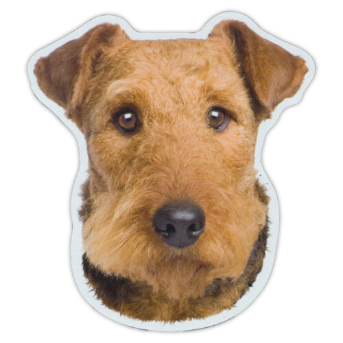 SUVs Cars Airedale Terrier Dog Breed Magnet Magnetic Bumper Sticker Trucks