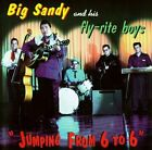 Jumping from 6 to 6 by Big Sandy & His Fly-Rite Boys (CD, Apr-1994, Hightone)