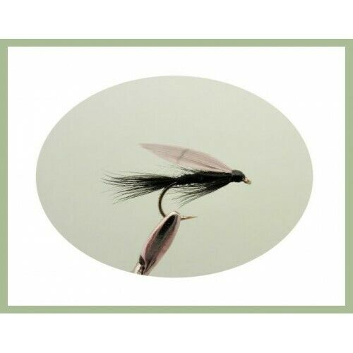 12 Pack mixed 10//12//14 Fishing Flies Black Gnats Wet trout Flies