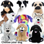 DOG-MAKING-KITS-build-stuff-your-own-teddy-bear-for-gift-or-party-20cm-8-034 thumbnail 1