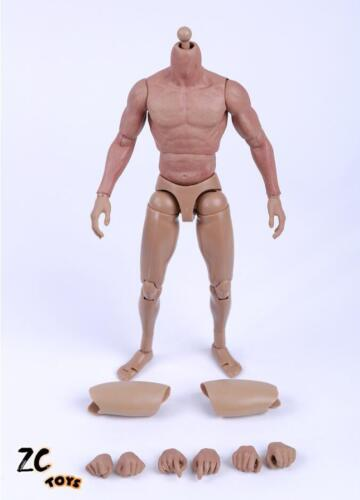 ZC TOYS 1//6 Muscular Nude Figure Body For Hot Toys TTM19 Fit Wolverine Head USA