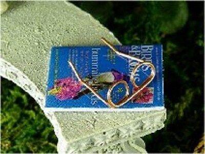 Copper Eye  Reading Glasses Miniature Faerie Gnome Hobbit Garden Dollhouse  MO