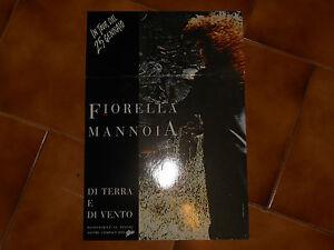 CARTONATO-DA-BANCO-FIORELLA-MANNOIA-NO-DISCO-cm-45-x-31-usato
