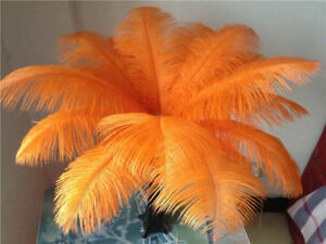 10-200-pcs-high-quality-natural-ostrich-feathers-6-24-inch-15-60cm-Orange