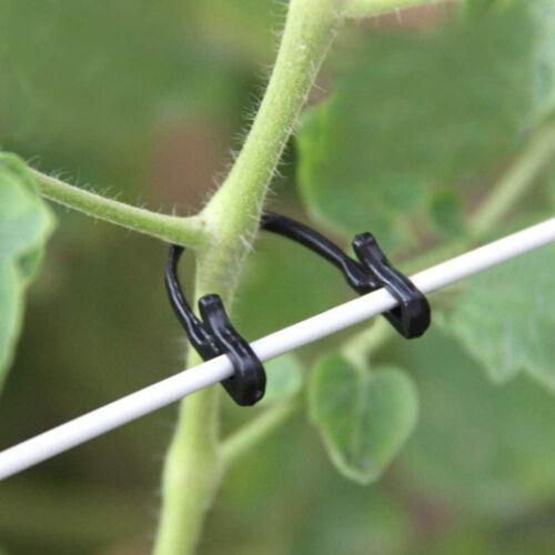 200pcs Self Locking Plant Vines Fastener Tied Hooks Vegetable Grafting HVM