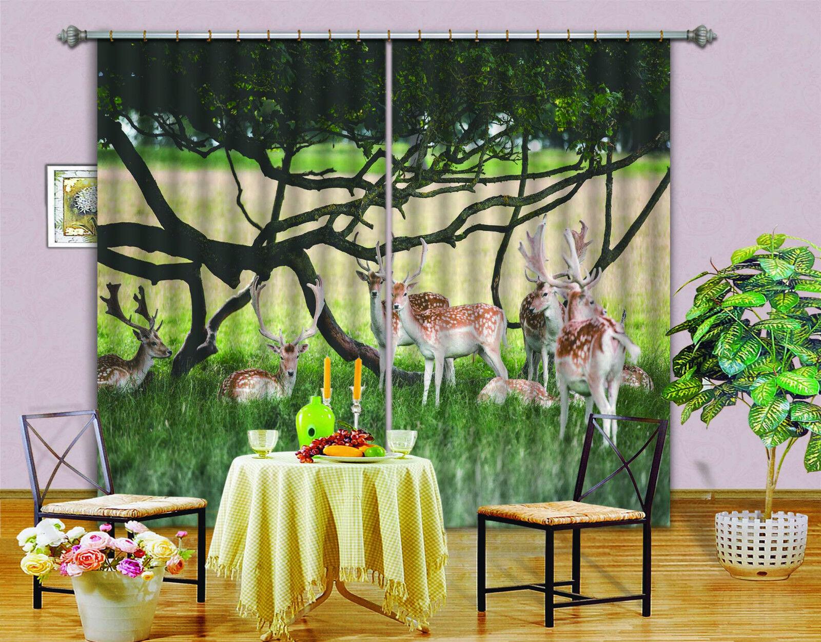 3d césped Hirsch 314 bloqueo foto cortina cortina de impresión sustancia cortinas de ventana