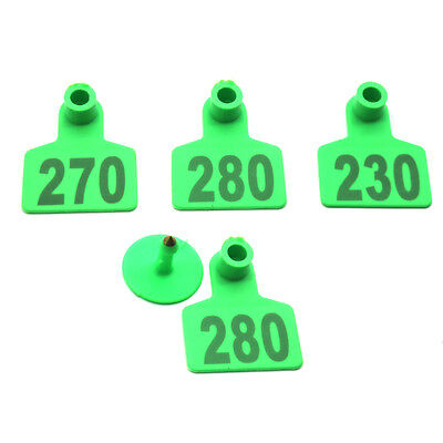 201-300 Green Number Plastic Livestock Ear Tags Animal Tag for Goat Sheep Pigs