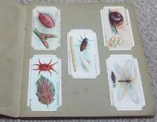 GARDEN LIFE - COMPLETE 1914 WILLS LOOSE CIGARETTE CARDS IN ALBUM