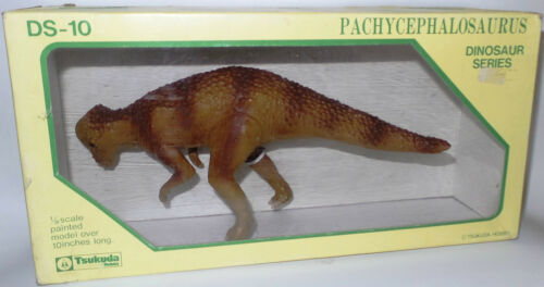 DINOSAURS 1//30 SCALE PACHYCEPHALOSAURUS  BOXED  MODEL MADE BY TSUKUDA HOBBY