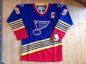 d3ac7b67 Wayne Gretzky Vintage Mitchell & Ness St. Louis Blues NHL Jersey ...