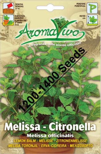 seeds Superior Quality Very Fresh seeds. 1200-1400 Lemon Balm Herb Seeds