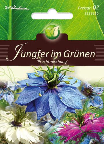 """Jungfer i Grünen,/""""Prachtmischung/"""",Samen,Nigella damascena,Blumen,Chrestensen,PG2"""